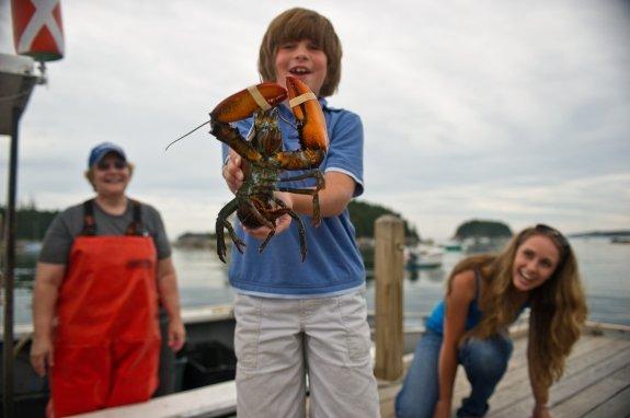 boy-with-lobster-mot