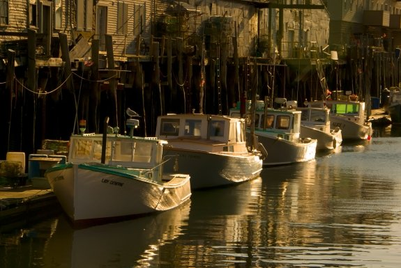golden-lobster-boats-mot