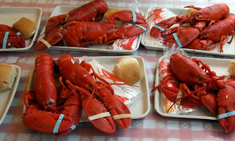 Maine Lobster Festival (Aug 3-7, 2016)