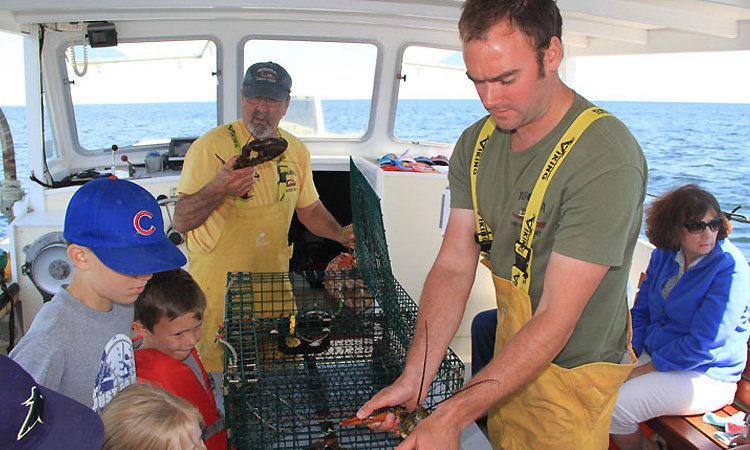 Rugosa Lobster Tours