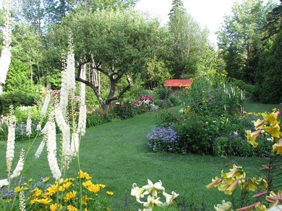 thuya-garden