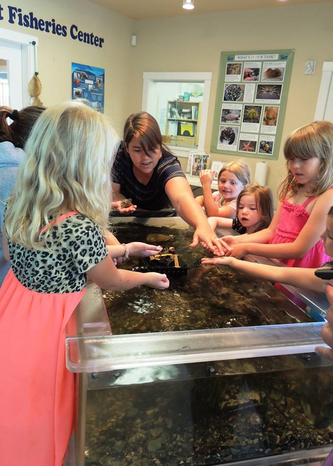 Penobscot East Resource Center touch tanks
