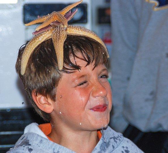 boy-with-starfish