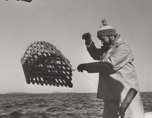 Lobsterman tossing lobster trap overboard.